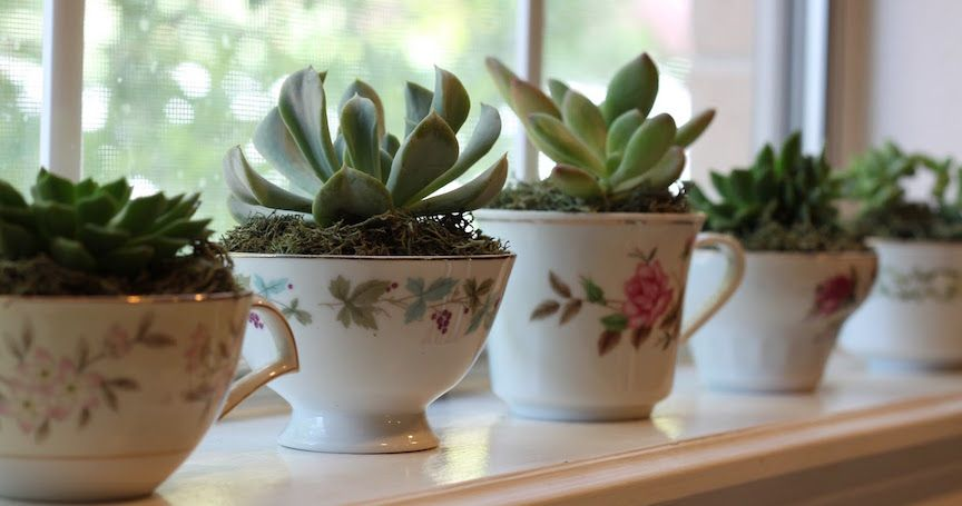 20 Easy Ways to Welcome Spring Into Your Home