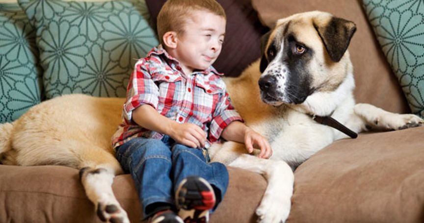 The Heartwarming Stories Of Pets Who Saved Disabled Children's Lives