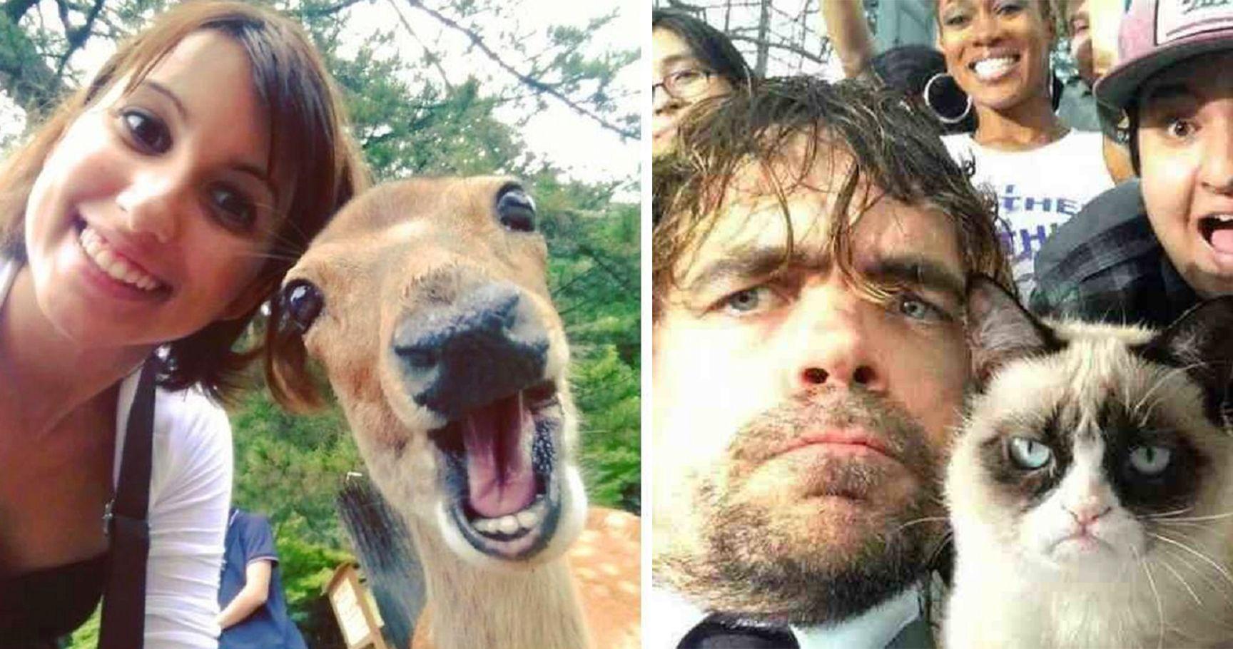 15 Epic Selfies Taken With Animals