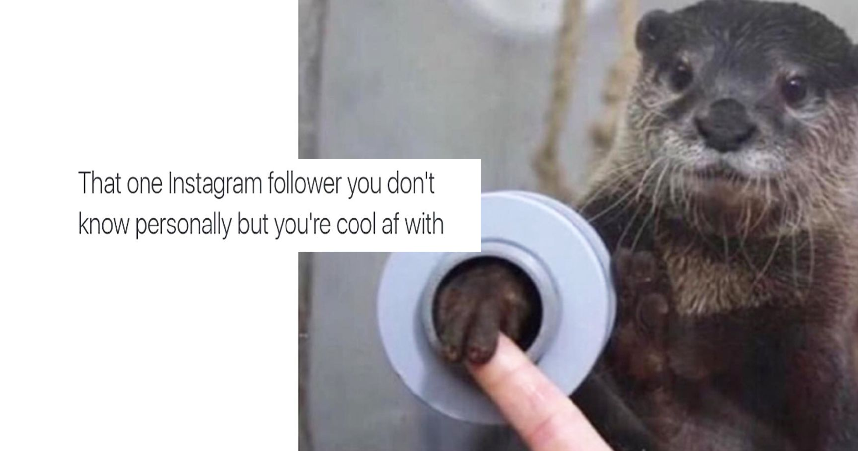 15 Hilarious But True Things We All Experience On Social Media