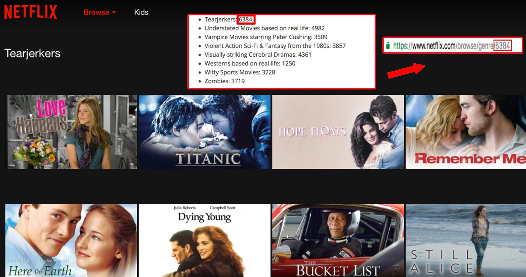15 Life-Changing Netflix Hacks You Need To Know