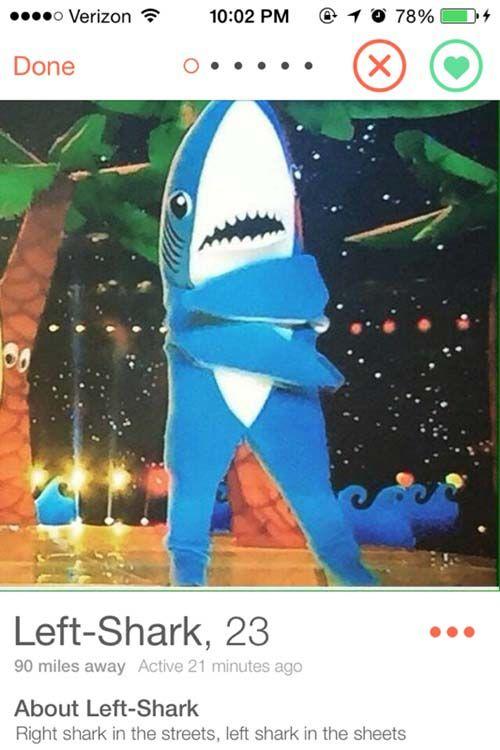 funny-tinder-profile-left-shark