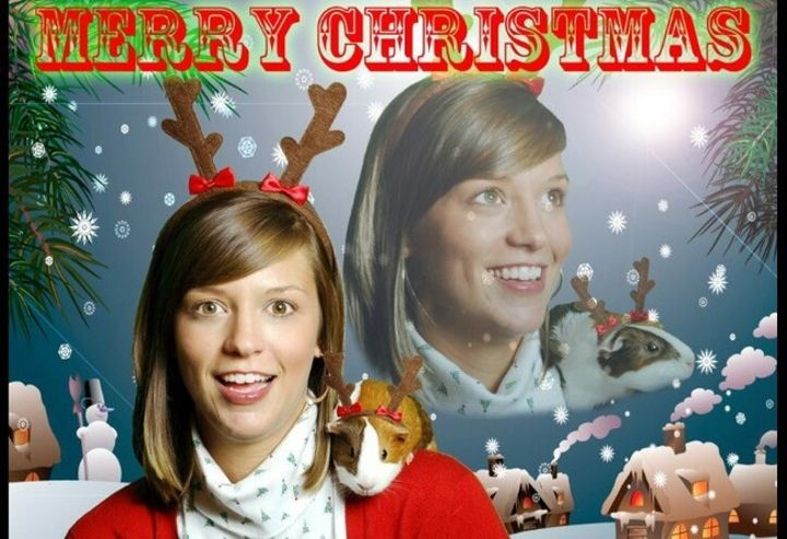 15 Hilarious 'Bitterly Single' Christmas Cards That Totally Win At ...