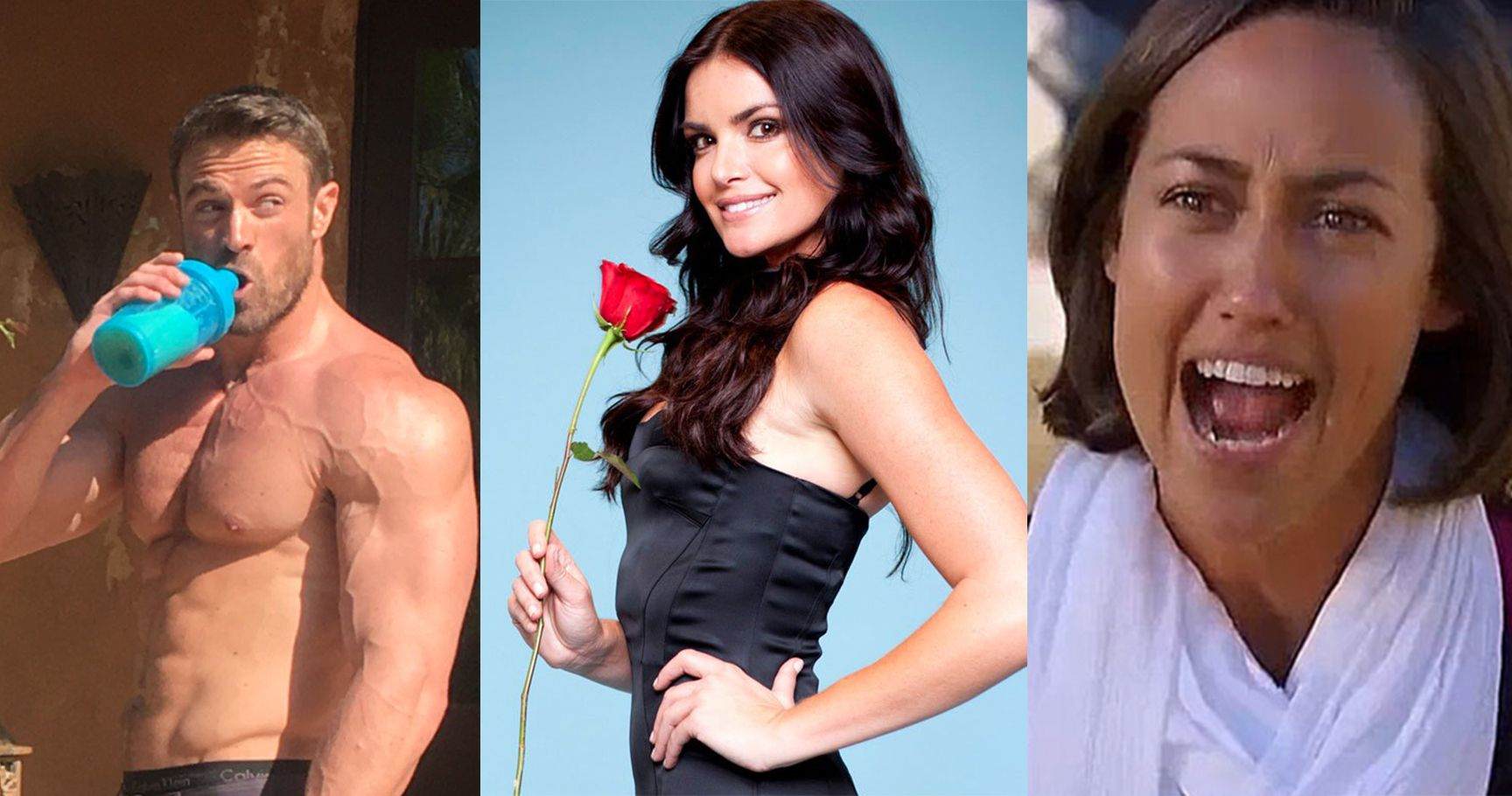 15 Of The Most Scandalous Villains From 'The Bachelor'