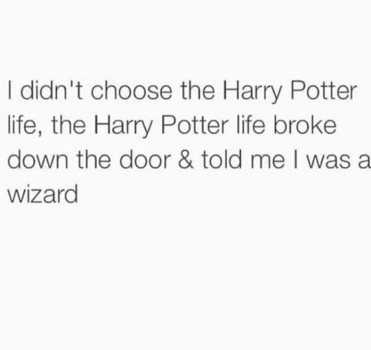 https://www.tumblr.com/tagged/you're-a-wizard-harry