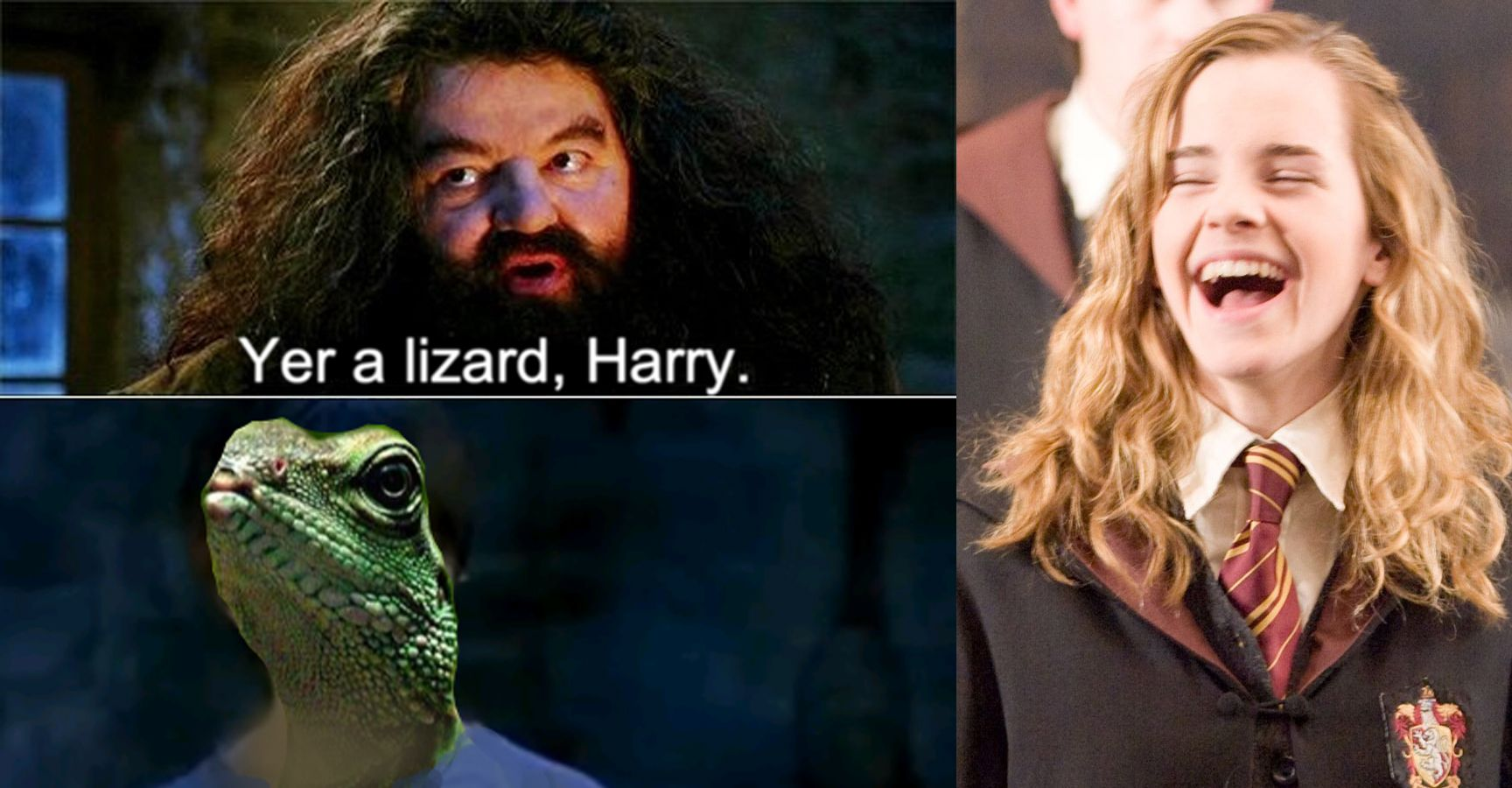 "15 Hilarious ""You're a Wizard, Harry"" Memes That Will Make You ROFL"