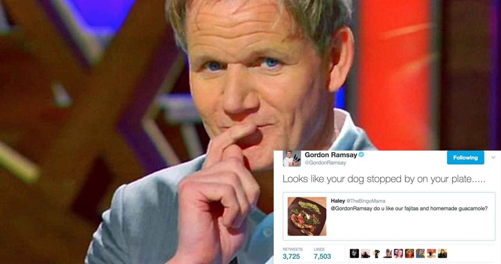 15 Times Gordon Ramsay Was The Most Savage Person On Twitter