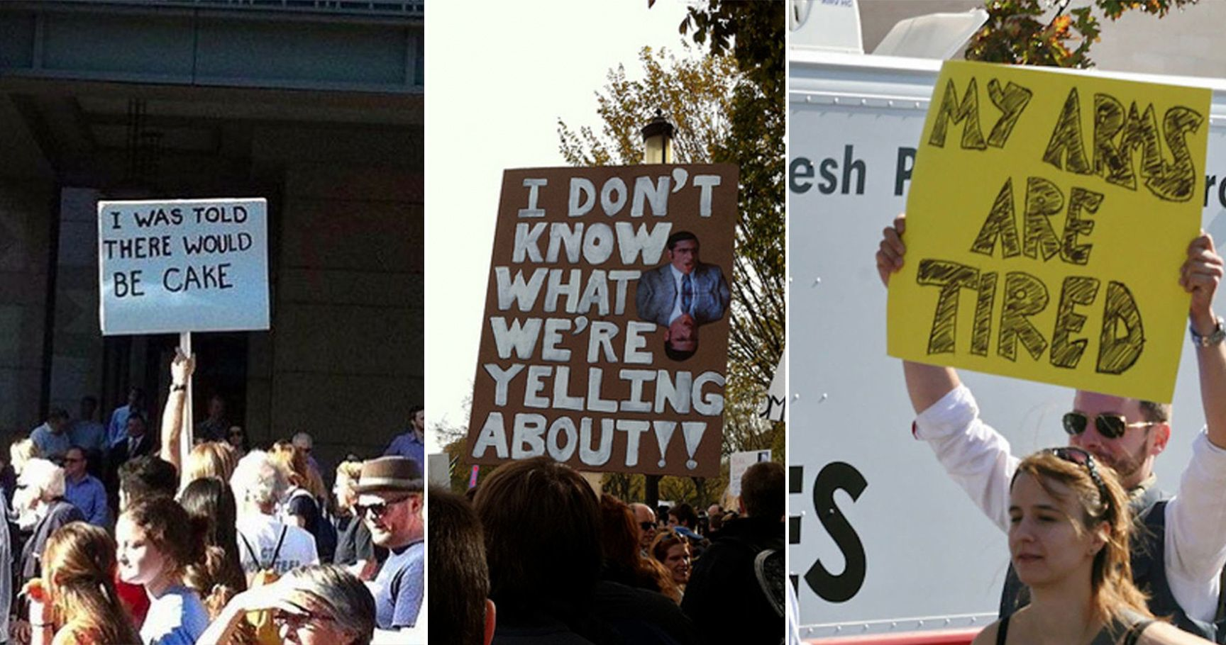 16 Hilarious Protest Signs That Will Make Anyone LOL