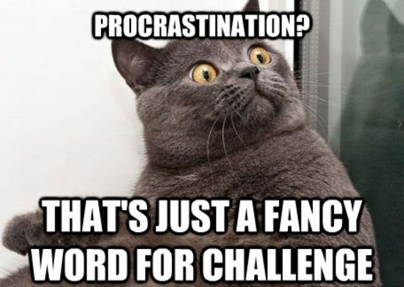 9ba7684a10bf6b528f8e043385fe267fd3bd394d2f271481149fcad25c1c9efc 15 hilarious memes that will make procrastination lovers say \