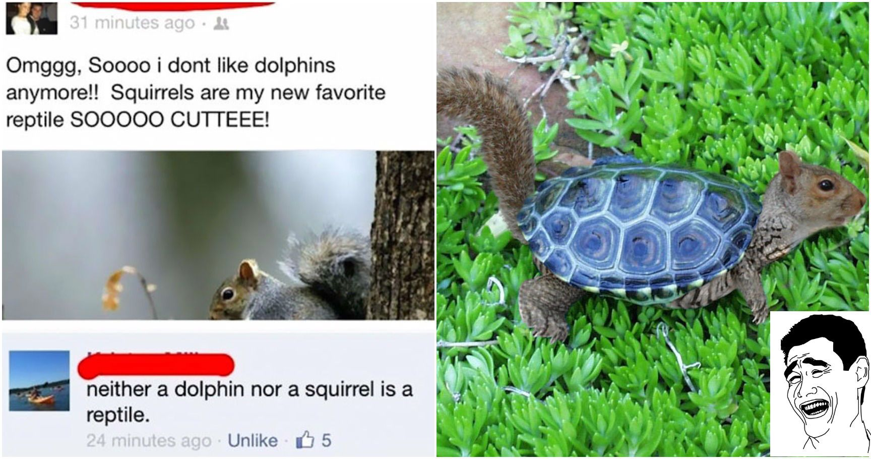 15 Of The Worst Facebook Fails That Will Instantly Make You Feel Smarter