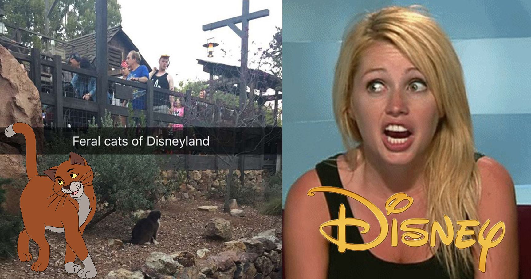 15 Insane Secrets Disneyland Doesn't Want Us to Know