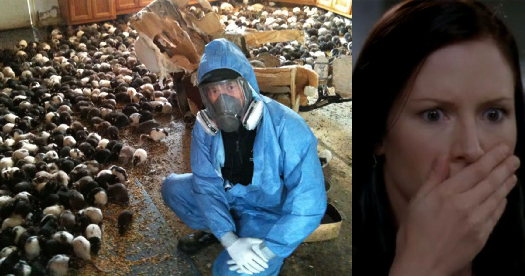 15 Hoarding Horror Stories That Made Our Skin Crawl