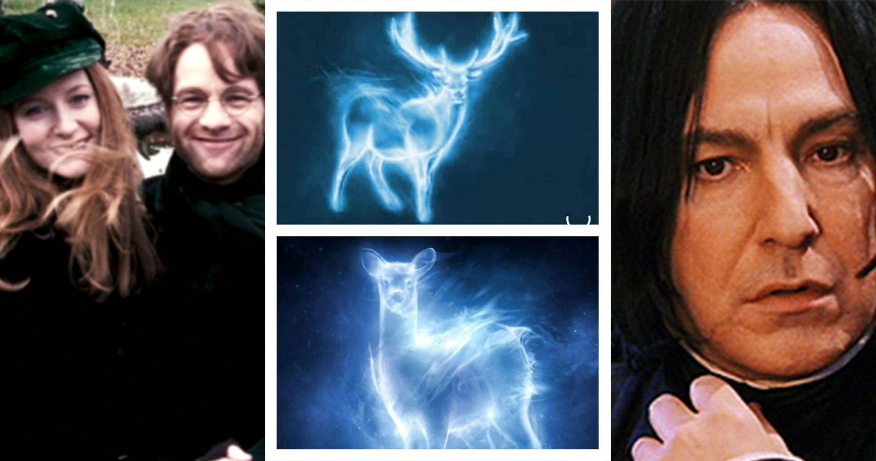 The Potters: 15 Things Only Diehard Fans Know About James & Lily