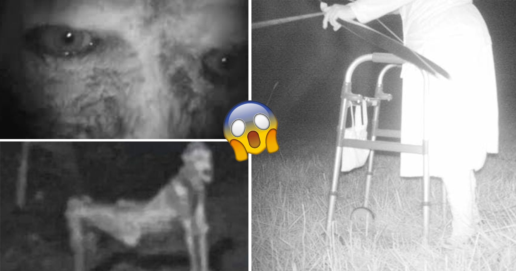 15 Horrifying Trail Cam Photos That Are Every Camper's Worst Nightmare