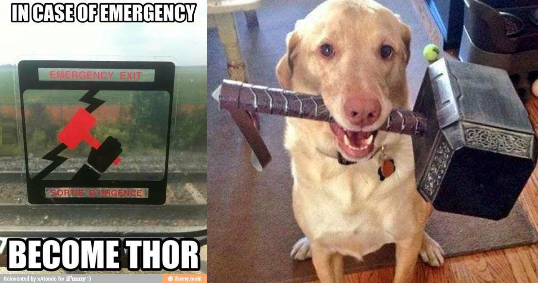 15 Marvel Memes That Will Get You Pumped For 'Thor: Ragnarok'