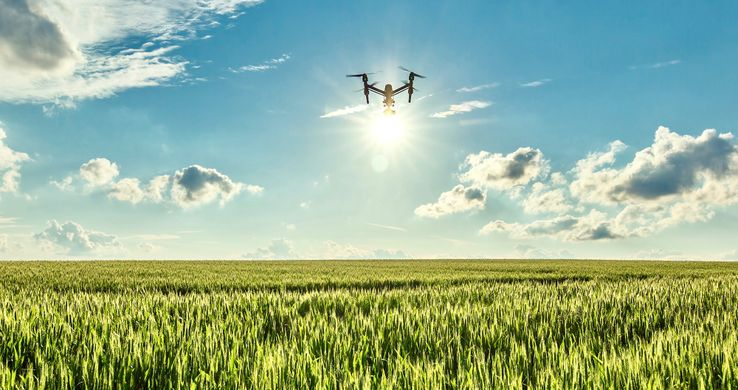 Drones Can Effectively Plant Billions Of Trees A Year