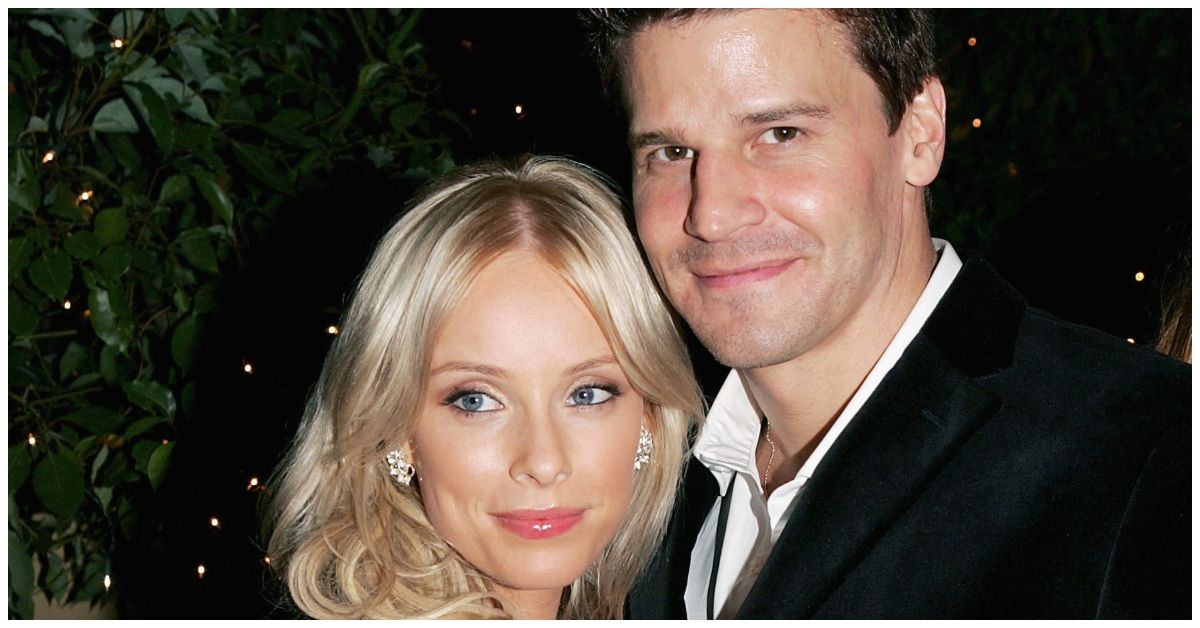 Who Is David Boreanaz's Wife Jamie Bergman, And What Does She Do?
